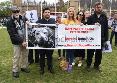 Celebrities and MP's join activists from PupAid and C.A.R.I.A.D (Care and Respect Includes All Dogs) outside the Houses of Parliament