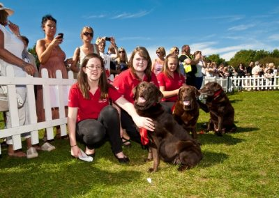 pup_aid_2012_5_20130507_1895509364