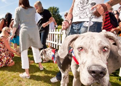 pup_aid_2012_7_20130507_1729322375